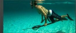 Commonly asked questions about Spearfishing