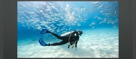 5 Most Popular Scuba Diving Fins